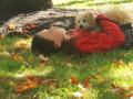 Girl & Dog Waiting for Parade